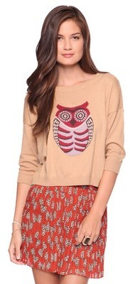 Forever 21 Cozy Owl Sweater
