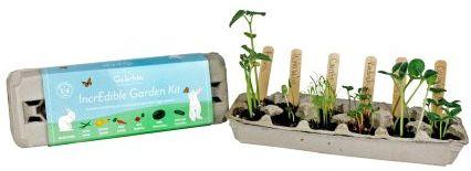 Sur La Table Little Bunny Garden Kit