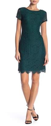 Laundry by Shelli Segal Scallop Trim Lace Dress
