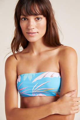 L-Space L Space Beach Wave Bandeau Bikini Bikini Top