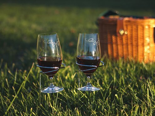 Picnic Plus Wine Glass Holders