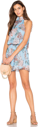 Line & Dot Rudi Halter Dress $87 thestylecure.com