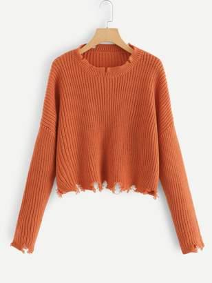 Shein Solid Raw Hem Crop Sweater