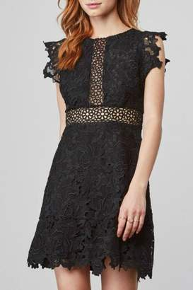 BB Dakota Scalloped Lace Dress