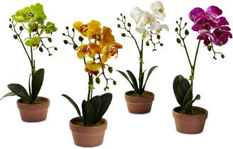 Nearly Natural 4-Pc. Phalaenopsis Orchid Set with Clay Vases