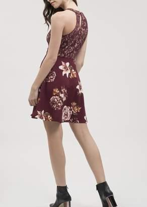 Blu Pepper Floral Lace Dress