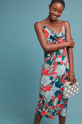 94867e7080d0 Bl-nk Monstera Petite Slip Dress