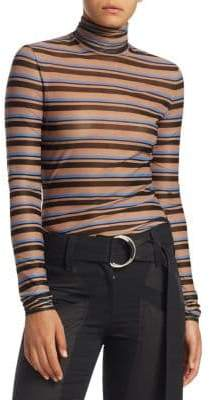 Striped Sheer Turtleneck Sweater