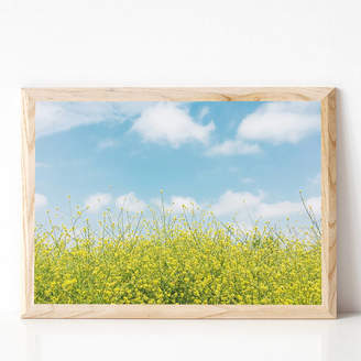 Cassia Beck Art and Photography Golden Meadow Photographic Landscape Print