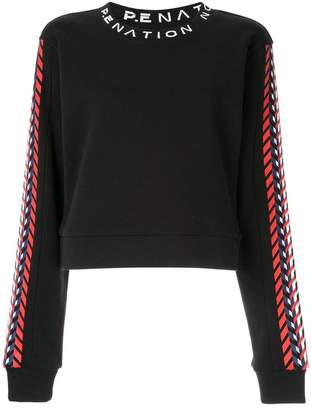 P.E Nation tribe nation sweatshirt