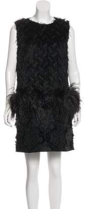 Lanvin Feather-Trimmed Fil Coupé Dress