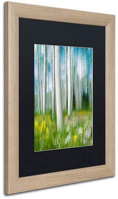 "Michael Blanchette Photography 'Aspen Impression' Matted Framed Art, 16"" x 20"""