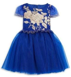 Little Girl's Embroidered Tulle Dress