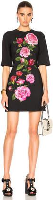 Dolce & Gabbana Cady Rose Print Mini Dress $2,195 thestylecure.com