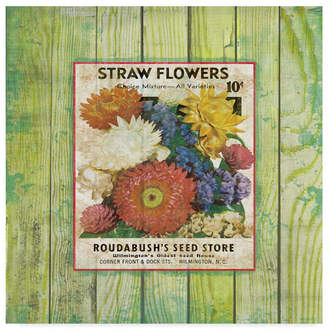 """Jean Plout traw Flowers On Wood 3' Canvas Art - 14"""" x 14"""""""