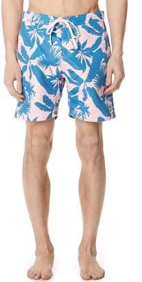 Trunks Bather Tropical Palms Surf