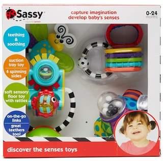Sassy Discover the Senses Toys