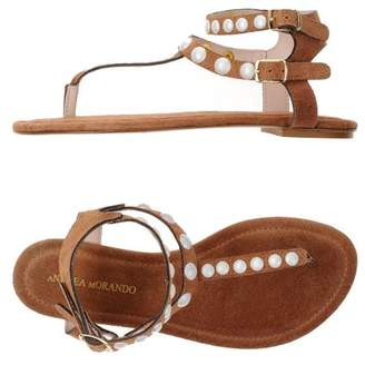 Sandale Post Orteil Vie Andrea 9qdgorpXr