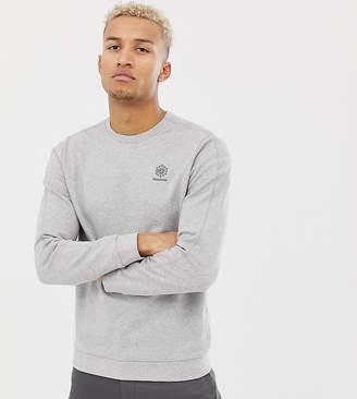 Reebok classic sweater in gray