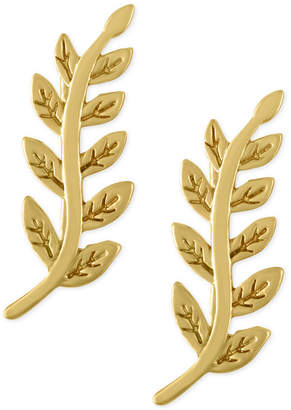 Rachel Roy Gold-Tone Vine Ear Crawlers