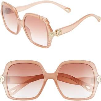 Chloé Vera 55mm Square Sunglasses