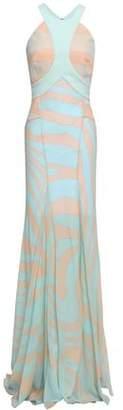 Roberto Cavalli Paneled Zebra-print Silk Gown