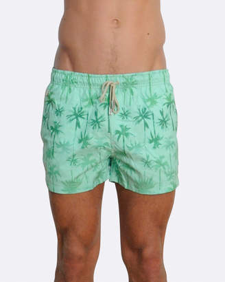 Palm Beach Boardshorts