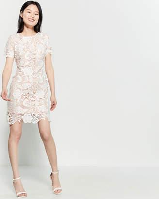 eacda770 Dress the Population Anna Short Sleeve Lace Dress