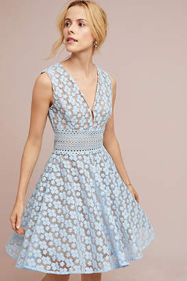 Bronx and Banco Amsonia Lace Dress
