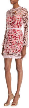 La Maison Talulah Roseate Lace Long-Sleeve Mini Dress