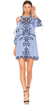 Parker Newton Dress in Blue $398 thestylecure.com