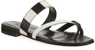 Manolo Blahnik Susa Flat Snake Slide Sandals