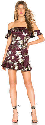 Tularosa Ivy Dress