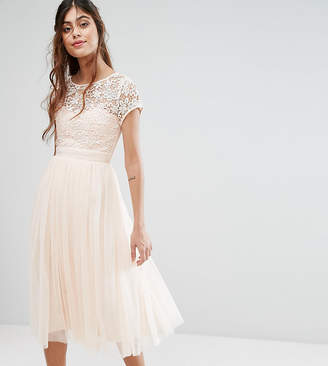 Little Mistress Short Sleeve Lace Bodice Midi Dress With Tulle Skirt