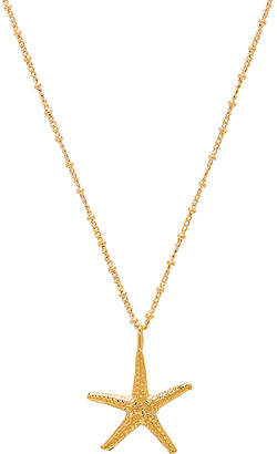 joolz by Martha Calvo Seastar Necklace