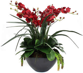 """One Kings Lane 28"""" Red Orchid Arrangement with Planter - Faux"""
