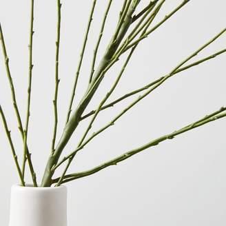 west elm Faux Botanicals - Grass (Large)