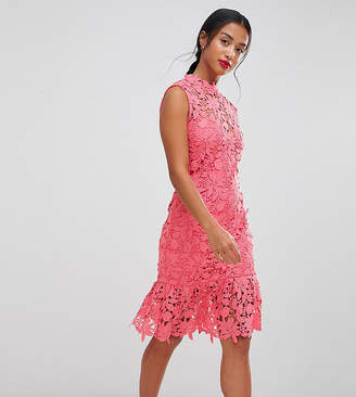 Paper Dolls Petite High Neck Lace Dress With Pephem