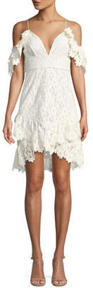 Saylor Dana Painted Lace Cold-Shoulder Mini Dress