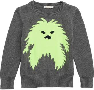 J.Crew crewcuts by Yeti Sweater
