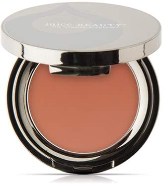 Juice Beauty last looks blush 04 flush 0.11 oz