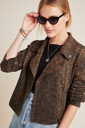 Marrakech Marni Leopard Moto Jacket