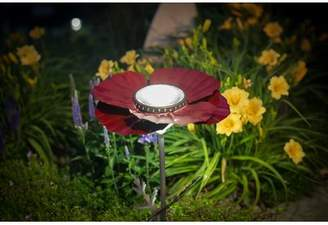 Desert Steel Poppy Solar 2-Light LED Pathway Light