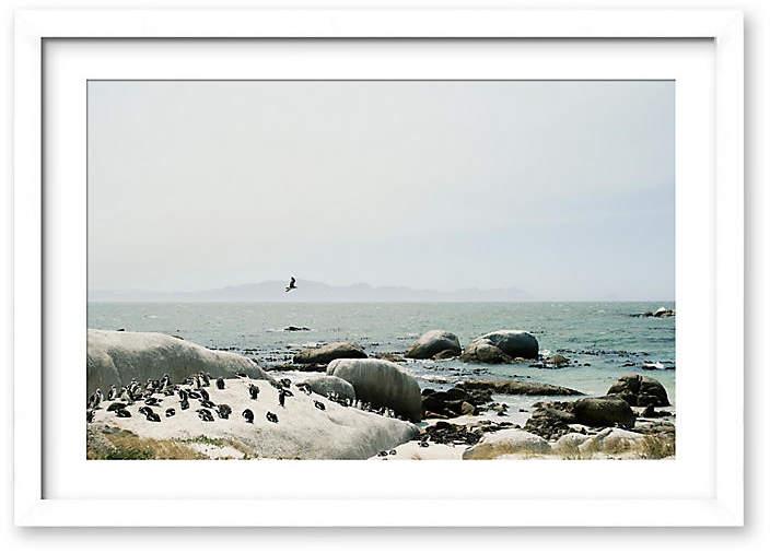 Penguins - Christine Flynn - 33.5