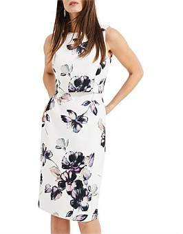 Phase Eight Gracie Floral Dress