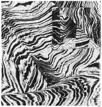 Barbara Bui zebra print scarf