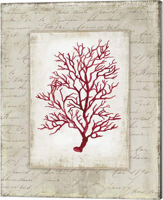 Wilson Red Coral Iii Border By Aimee Canvas Art