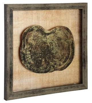 Generic Anatomy Of A Tree Printed On Glass Mirror - Distressed Wood Frame - Wall Art