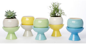 Perch Campy Planters