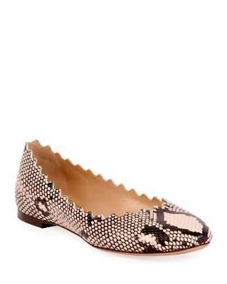 Chloé Lauren Scalloped Snake-Print Ballet Flats